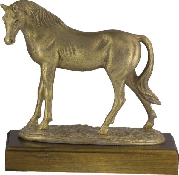 trofeo caballo